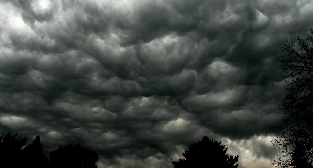Storm Dorris